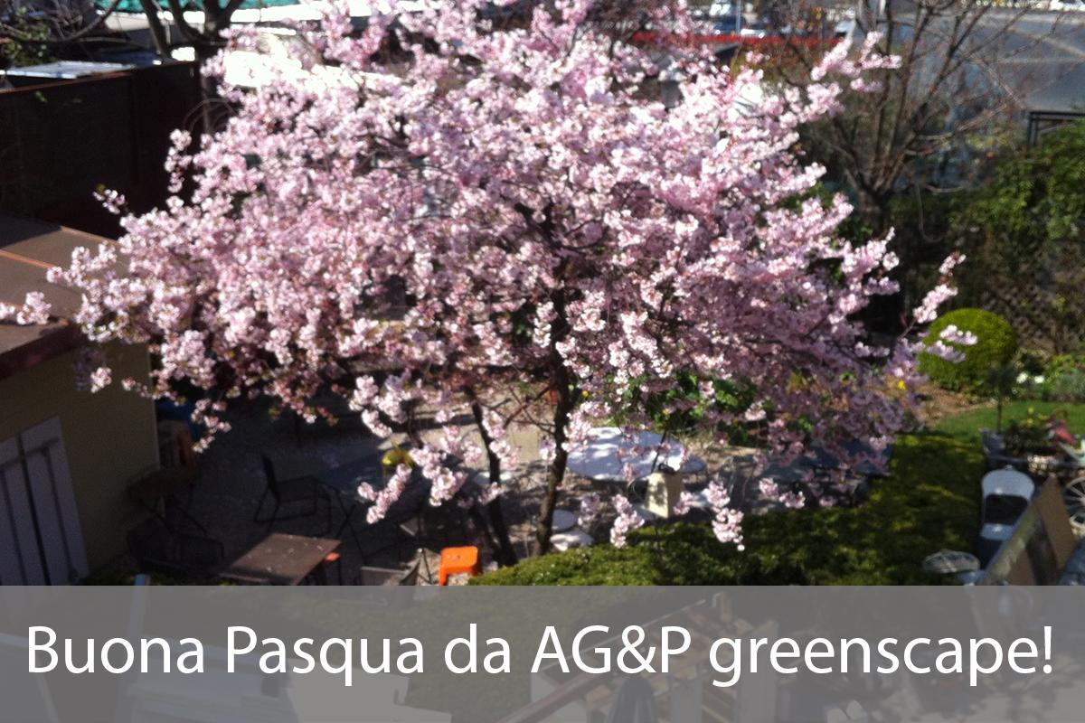 Buona Pasqua da AG&P greenscape