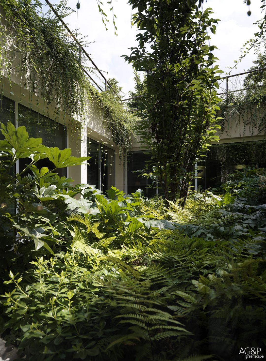 The Underground Garden