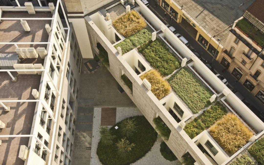 Affaccio su un tetto verde