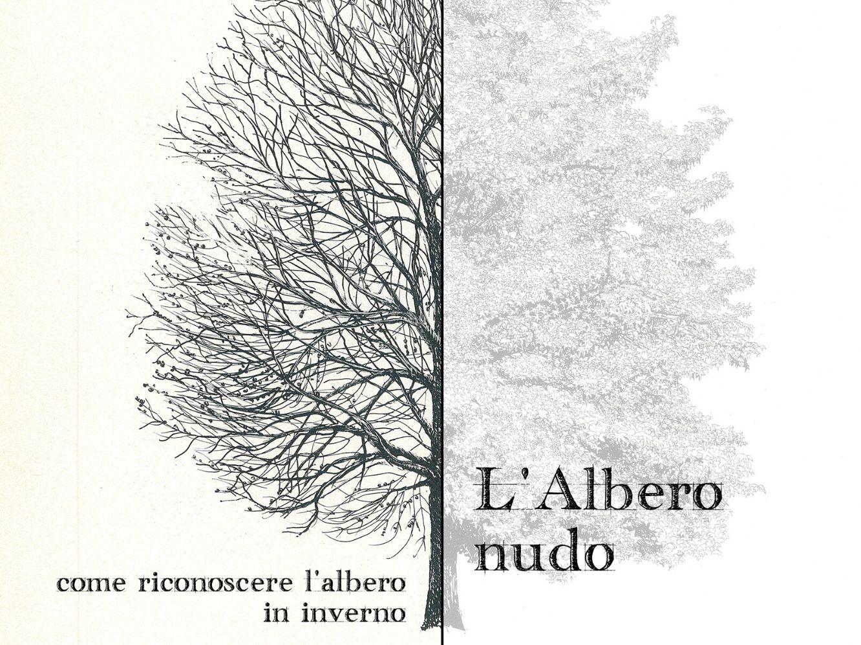 """""""L'Albero Nudo"""" – AG&P greenscape per i BAM Winter Day"""